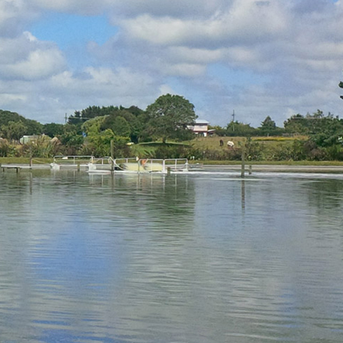 https://www.parklink.nz/wp-content/uploads/2016/07/parklink-eltham-pond-feature.jpg